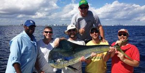 dolphin-fishing-charters