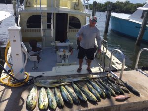 Lots of mahi mahi off 10 miles off fort lauderdale