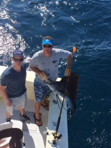 Sailfish Taged And Relased